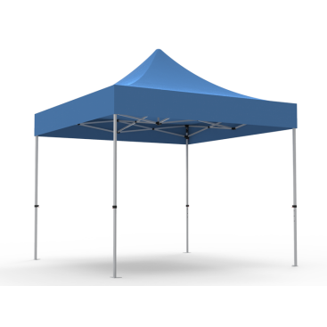 10 x 10ft  Pop Up Canopy with BLACK Roof